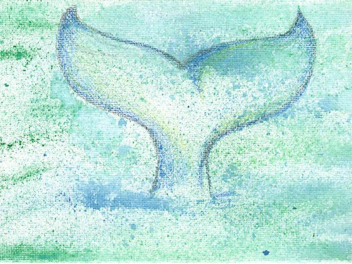 Whale_drawing